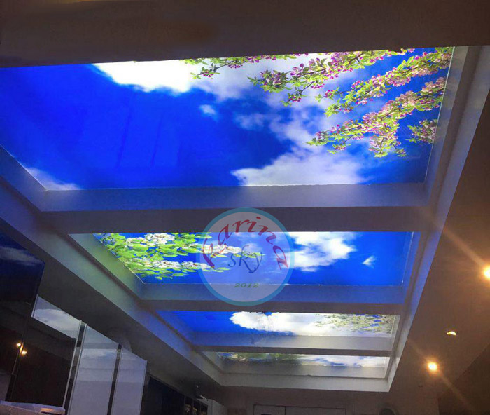 آسمان مجازی کارینا اسکای